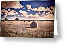 Baled Out Greeting Card