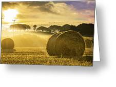 Bales In The Morning Mist Greeting Card