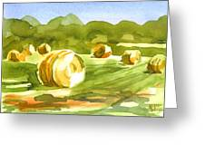 Bales In The Morning Sun Greeting Card by Kip DeVore