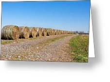 Bales Of Hay On An Old Farm Road Greeting Card