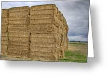 Bales Of Hay On Farmland Greeting Card
