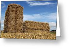 Bales Of Straw Against Blue Sky Greeting Card