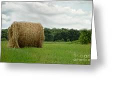 Bales Greeting Card