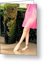 Ballet Point Greeting Card