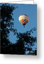 Balloon-6992 Greeting Card
