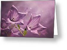 Balloon Flowers Greeting Card