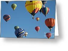 Balloons Galore Greeting Card