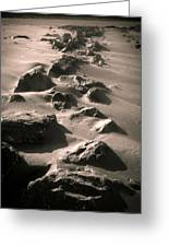 Bally B Desert Greeting Card