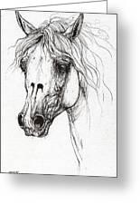 Balon Polish Arabian Horse Portrait 2  Greeting Card
