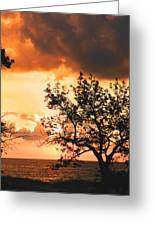 Baltic Sunset In The South Of Sweden Greeting Card