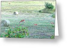 Bambi And The Twins  Greeting Card
