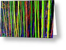 Bamboo Dream Greeting Card
