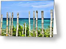 Bamboo Fence Greeting Card by Keith Ducker