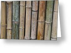 Bamboo Fence Greeting Card