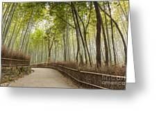 Bamboo Forest Arashiyama Kyoto Japan Greeting Card by Colin and Linda McKie