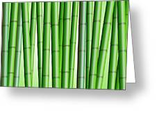 Bamboo Forest Background 2 Greeting Card