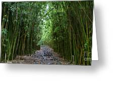 Bamboo Forest Trail Hana Maui Greeting Card