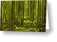 Bamboo Forest Twilight  Greeting Card