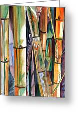 Bamboo Garden Greeting Card by Marionette Taboniar