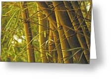 Bamboo Gold Greeting Card