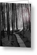 Bamboo Grove At Dusk Greeting Card