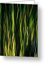 Bamboo In Motion Greeting Card