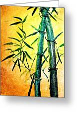 Bamboo Magic Greeting Card