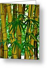 Bamboo Of Hawaii Greeting Card