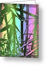 Bamboo Study 8 Greeting Card