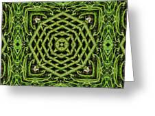 Bamboo Symmetry Greeting Card