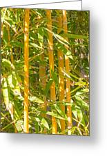 Bamboo Vertical Greeting Card by Christina Rahm