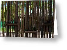Bamboo View Greeting Card