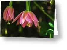 Banana Poka Blossom Greeting Card