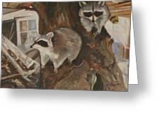 Bandit Sisters Greeting Card