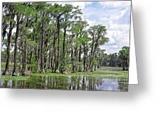 Banks Lake Georgia Greeting Card