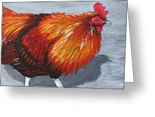 Bantam Rooster 2 Greeting Card