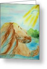 Baptism Of Christ Greeting Card by Melanie Palmer