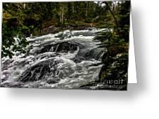 Baranof River Greeting Card