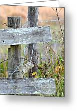Barbed Fence Greeting Card