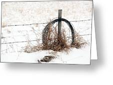 Barbed Wire Fence Post Greeting Card