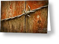 Barbed Wire On Wood Greeting Card