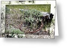 Barbwire Wreath 2 Greeting Card