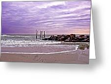 Barely There Greeting Card by Tom Gari Gallery-Three-Photography