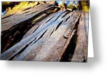 Bark Texture Greeting Card