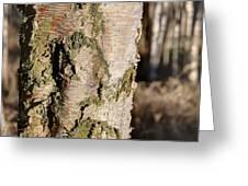 Bark1 Greeting Card