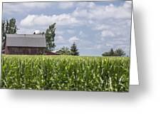 Barn And Corn Greeting Card