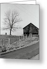 Barn And Tree Greeting Card