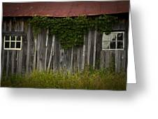 Barn Eyes Greeting Card