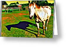 Barn Horse Greeting Card