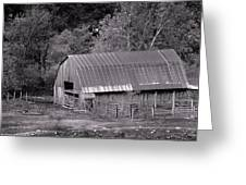 Barn In Black And White Greeting Card by Edward Hamilton